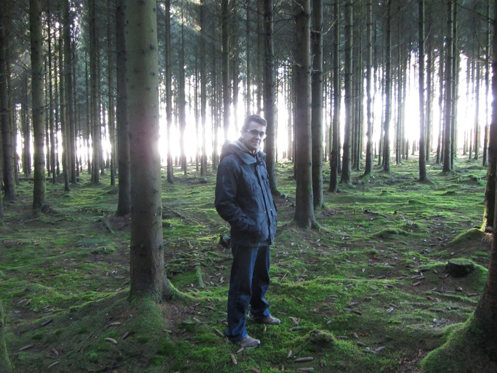 Bosques en los que se puede hacer de noche en pleno día